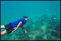 Free diver swimming amidst fish and coral. Dry Tortugas National Park ( color)