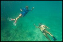 Couple free diving. Dry Tortugas National Park ( color)