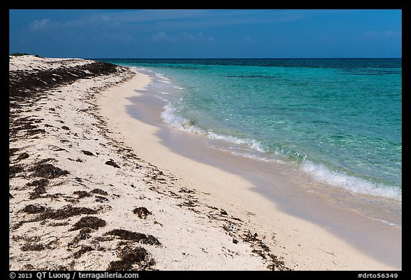 Beach with beached seagrass, Loggerhead Key. Dry Tortugas National Park (color)