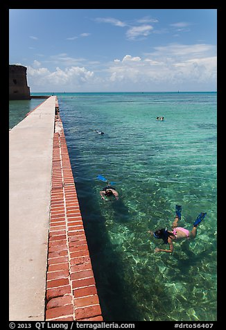 Snorkelers next to Fort Jefferson seawall. Dry Tortugas National Park (color)