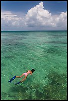 Woman snorkeling. Dry Tortugas National Park, Florida, USA. (color)