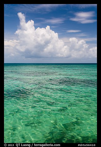 Reef and tropical clouds. Dry Tortugas National Park (color)