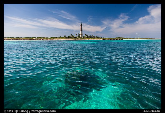 Coral head and Loggerhead Key light. Dry Tortugas National Park (color)