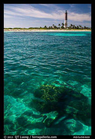 Coral head and Loggerhead Key lighthouse. Dry Tortugas National Park (color)