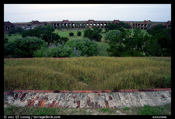 Grassy interior of Fort Jefferson. Dry Tortugas National Park (color)