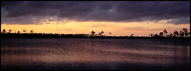 Sunset over lake with dark clouds. Everglades  National Park (Panoramic color)