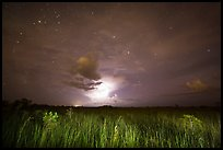 Sawgrass prairie with cloud lit by lightening. Everglades National Park, Florida, USA. (color)