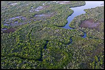 Aerial view of river and lake with chickees. Everglades National Park, Florida, USA. (color)