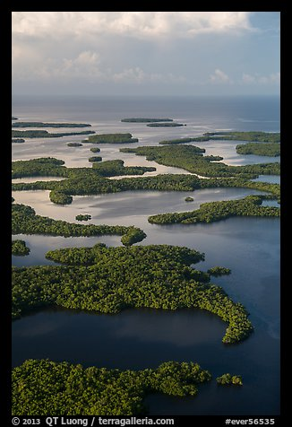 Aerial view of Ten Thousand Islands and coast. Everglades National Park (color)