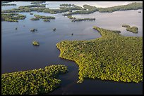 Aerial view of coastal mangrove islands. Everglades National Park, Florida, USA. (color)