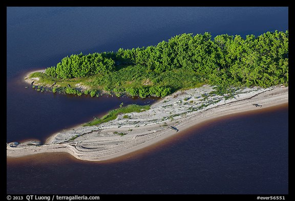 Aerial view of beach with alligators. Everglades National Park (color)