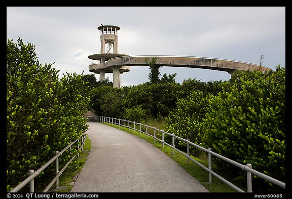 Trail and observation tower, Shark Valley. Everglades National Park (color)