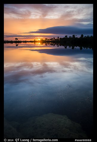 Sunset, Pines Glades Lake. Everglades National Park (color)