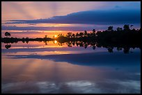Sunset reflections, Pines Glades Lake. Everglades National Park ( color)