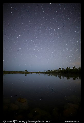 Starry night, Pines Glades Lake. Everglades National Park (color)