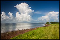 Coastal prairie, Florida Bay, and clouds. Everglades National Park ( color)