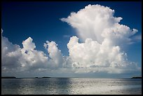 Summer clouds above Florida Bay. Everglades National Park ( color)