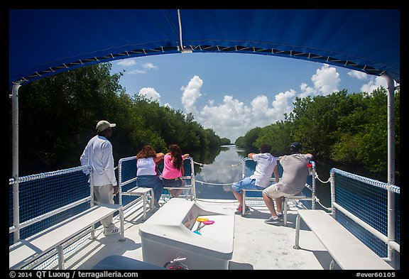 Canal seen from deck of tour boat. Everglades National Park (color)