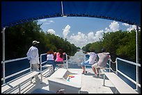 Canal seen from deck of tour boat. Everglades National Park ( color)