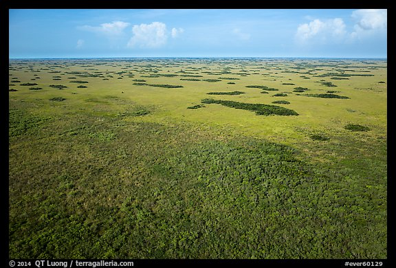 Aerial view of slough and hammocks, Shark Valley. Everglades National Park (color)