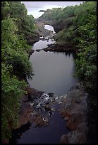 Oho o Stream on its way to the ocean forms Seven sacred pools. Haleakala National Park, Hawaii, USA. (color)