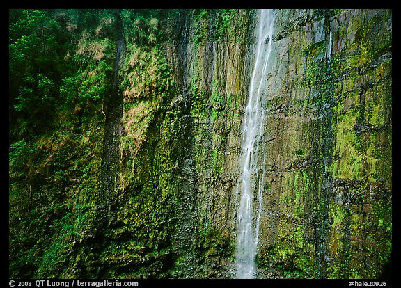 Waimoku Falls, more than 300 feet high. Haleakala National Park (color)