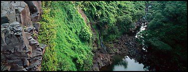 Cliffs with tropical vegetation. Haleakala National Park (Panoramic color)
