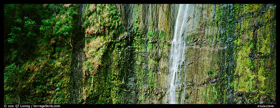 Verdant cliff with tropical waterfall. Haleakala National Park (color)