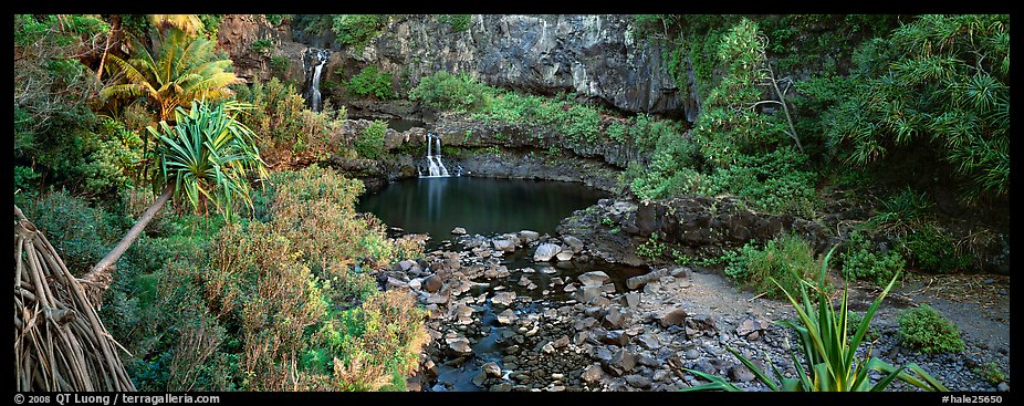 Tropical pools, waterfalls, and vegetation. Haleakala National Park (color)