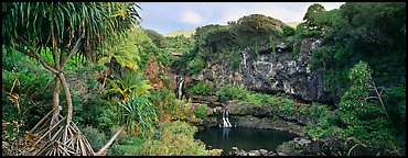 Tropical landscape with pools and waterfalls. Haleakala National Park (Panoramic color)