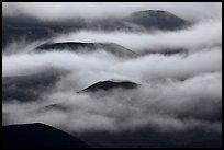 Cinder cones emerging from clouds. Haleakala National Park, Hawaii, USA. (color)