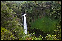 Makahiku falls plunging off a lush, green cliff. Haleakala National Park ( color)