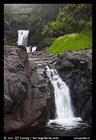 Waterfalls and bridge,  Seven Sacred Pools, Kipaluhu. Haleakala National Park (color)