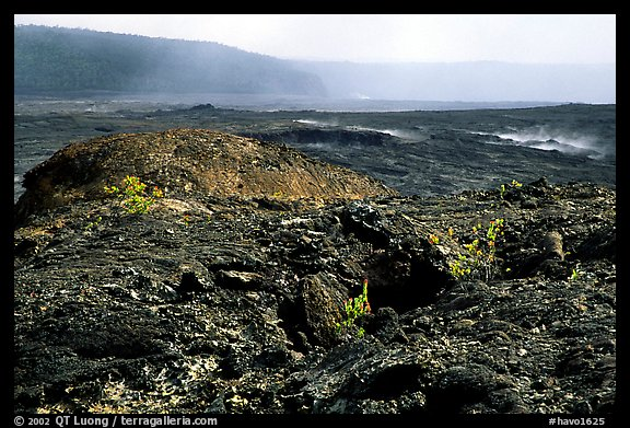 Volcanic landscape of lava field near Mauna Ulu crater. Hawaii Volcanoes National Park (color)