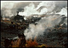 Fumeroles on the rim of Halemaumau crater. Hawaii Volcanoes National Park ( color)