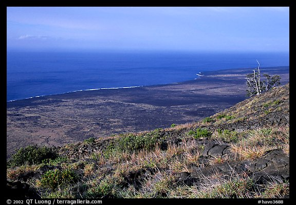 View of the coastal plain from Hilana Pali. Hawaii Volcanoes National Park (color)