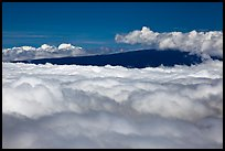 Mauna Loa emerging above clouds. Hawaii Volcanoes National Park, Hawaii, USA. (color)