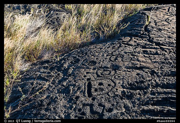 Lava slab covered with petroglyphs. Hawaii Volcanoes National Park (color)