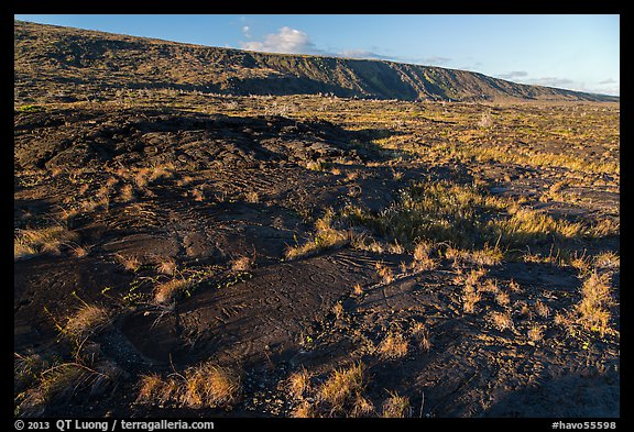 Puu Loa petroglyph field and pali. Hawaii Volcanoes National Park (color)