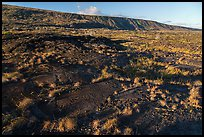 Puu Loa petroglyph field and pali. Hawaii Volcanoes National Park ( color)