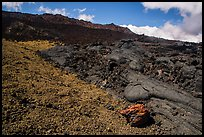 Olivine crystals, red lava rock, and lava fields, Mauna Loa. Hawaii Volcanoes National Park, Hawaii, USA. (color)