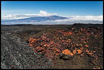 Vein of red and orange lava on Mauna Loa, Mauna Kea in background. Hawaii Volcanoes National Park ( color)