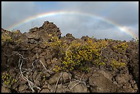 Rainbow over Kau desert. Hawaii Volcanoes National Park, Hawaii, USA. (color)