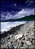 Coral heads on beach and dark hills, Tutuila Island. National Park of American Samoa ( color)