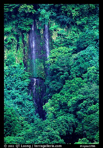 Ephemeral waterfall in Amalau Valley, Tutuila Island. National Park of American Samoa (color)