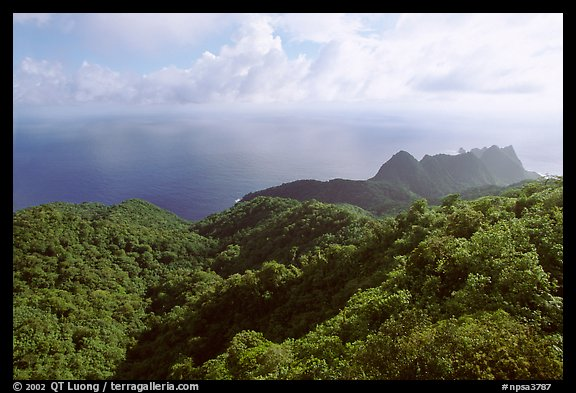 Tropical forest and Ocean from Mont Alava, Tutuila Island. National Park of American Samoa (color)