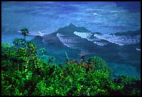 Tropical vegetation and turquoise waters in Vatia Bay, Tutuila Island. National Park of American Samoa (color)