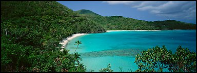 Tropical island scenery. Virgin Islands National Park (Panoramic color)