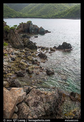 Rocks on jagged shoreline, Yawzi Point. Virgin Islands National Park (color)