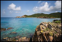 Turk cap cactus and blue waters, Little Lameshur Bay. Virgin Islands National Park ( color)